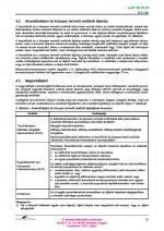13. PDF oldal
